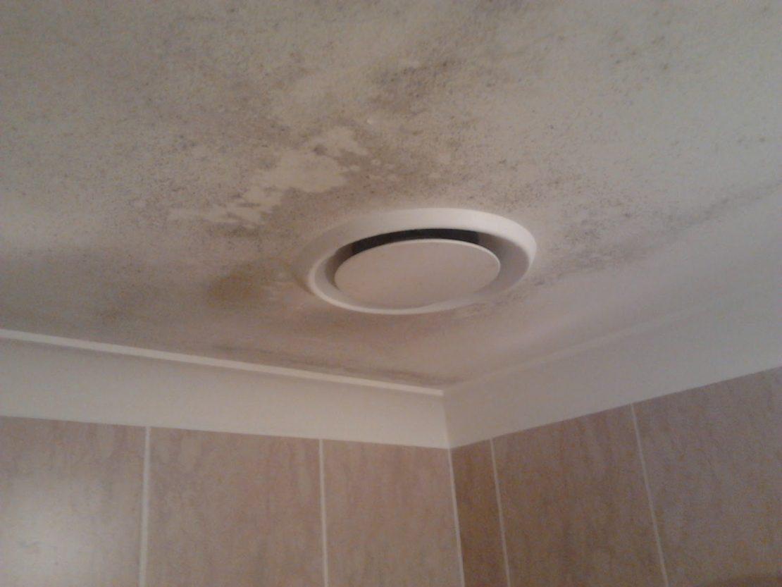 плесень в ванной на потолке